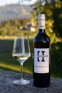 Grüner Veltliner vom Löss, Weingut Hellmer