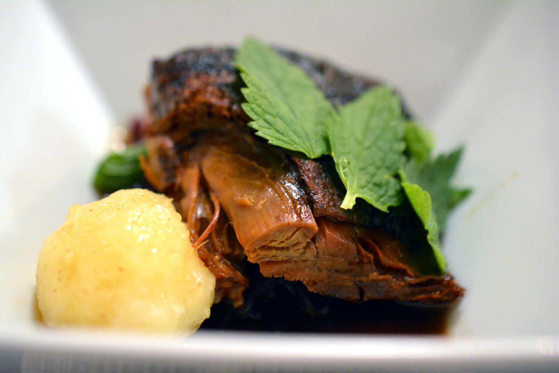 Weidegans mit Beifuß gebraten, Preiselbeer-Rotkraut & Erdäpfelknödl